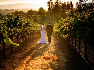 Hunter Valley Wedding Through The Vinyards