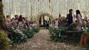 Googling For Your Wedding: Twilight Wedding Scene