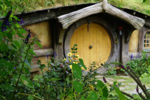 New Zealand Wedding Planner: Hobbiton