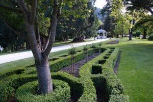 Queenstown Destination Wedding Planner: Queens Botanical Gardens
