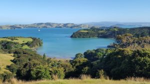 Auckland Destination Wedding Planner: Waiheke Island