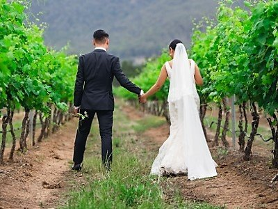 Hunter Valley Wedding Planner Pink Caviar