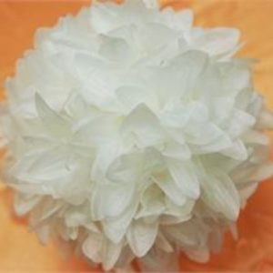 White Flower Ball