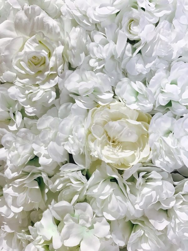 Rose & Hydrangea Flower Wall White Ivory