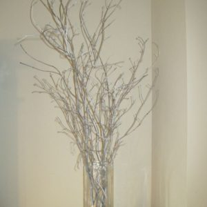 Silver Willow Branches in clear vase