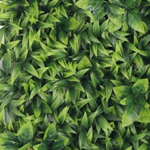 Greenery Wall Backdrop