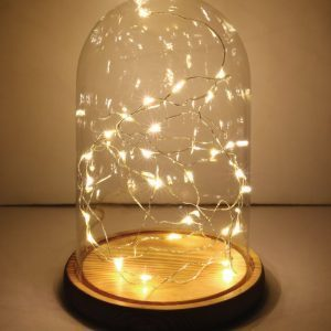 Bell Jar with LED lights