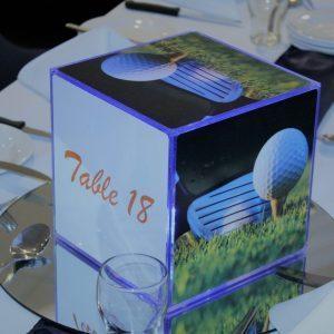 Single Branded Corporate Centrepiece Cube